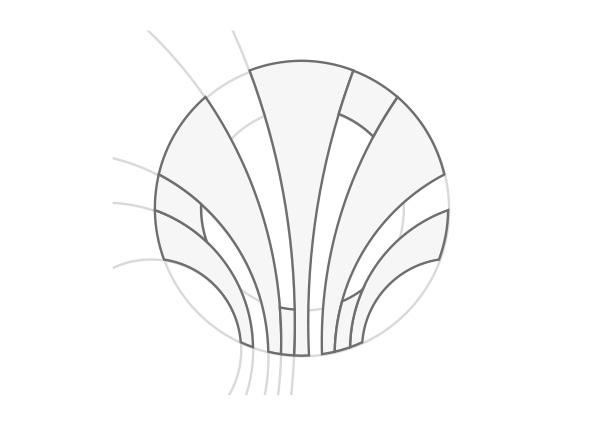 isotipo spondylux